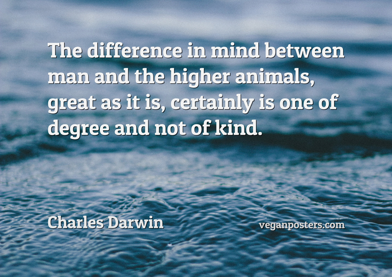 the difference between animals and mankind 2018-5-28 nature and animal quotes: inspirational quotations for creating a sustainable world: connecting to nature, respecting nature, nature's laws.