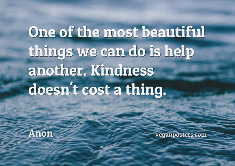 One of the most beautiful things we can do is help another. Kindness doesn't cost a thing.