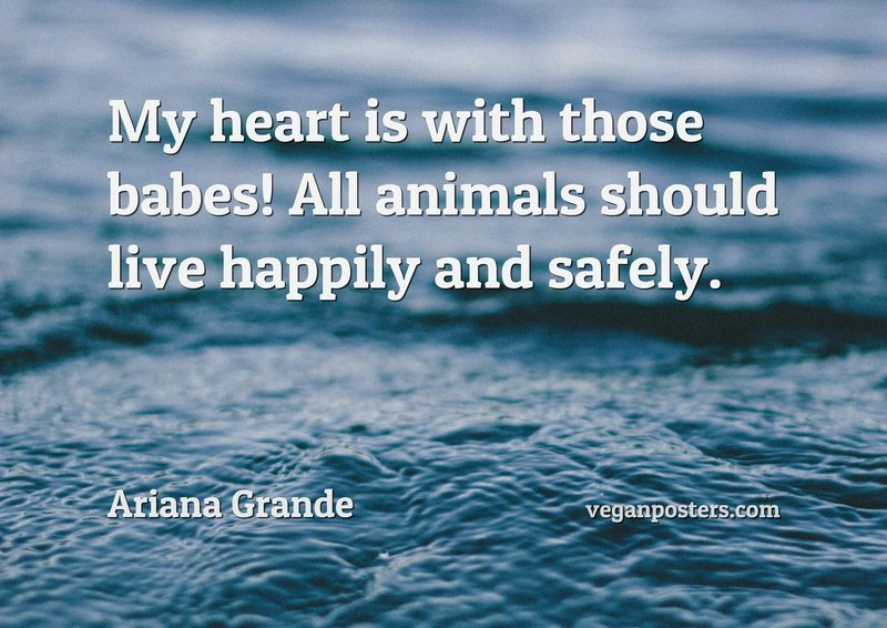 My heart is with those babes! All animals should live happily and safely.