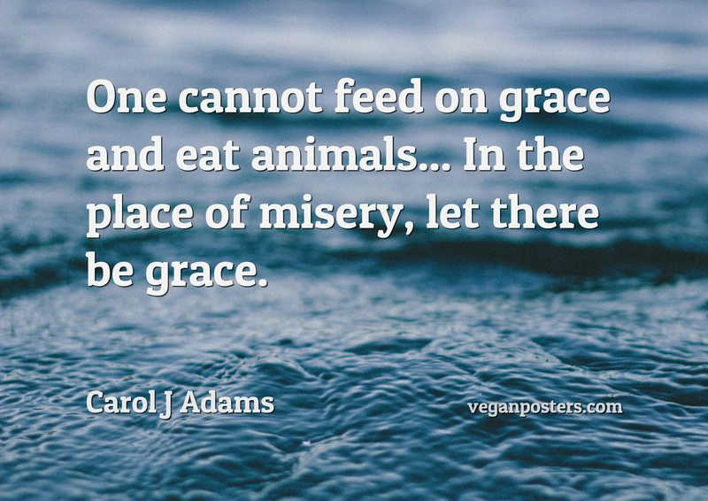 One cannot feed on grace and eat animals... In the place of misery, let there be grace.
