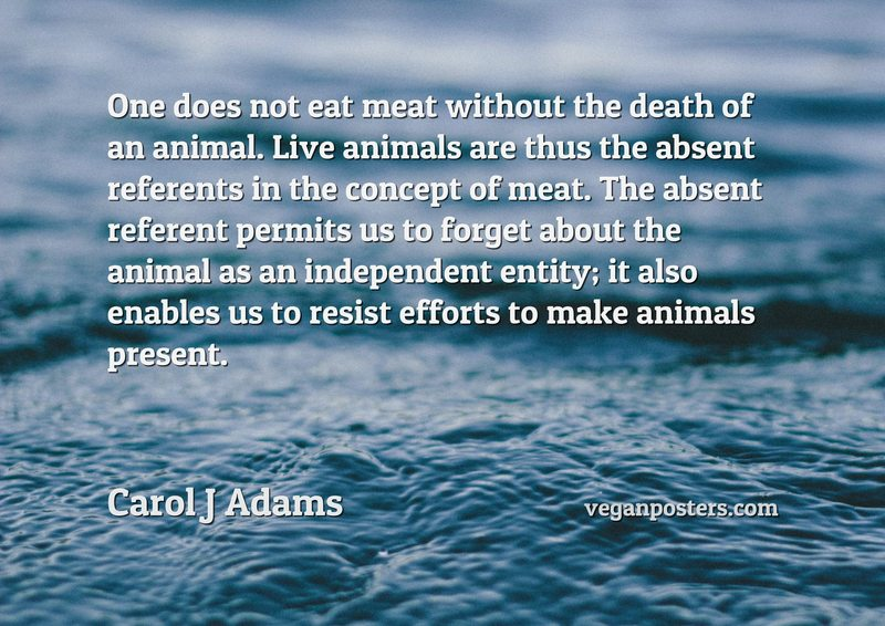 One does not eat meat without the death of an animal. Live animals are thus the absent referents in the concept of meat. The absent referent permits us to forget about the animal as an independent entity; it also enables us to resist efforts to make animals present.