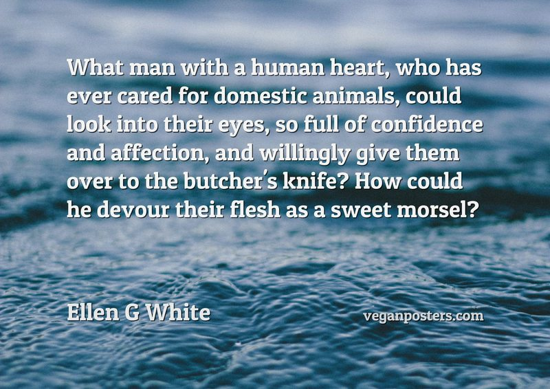 What man with a human heart, who has ever cared for domestic animals, could look into their eyes, so full of confidence and affection, and willingly give them over to the butcher's knife? How could he devour their flesh as a sweet morsel?
