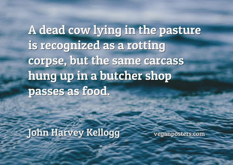 A dead cow lying in the pasture is recognized as a rotting corpse, but the same carcass hung up in a butcher shop passes as food.