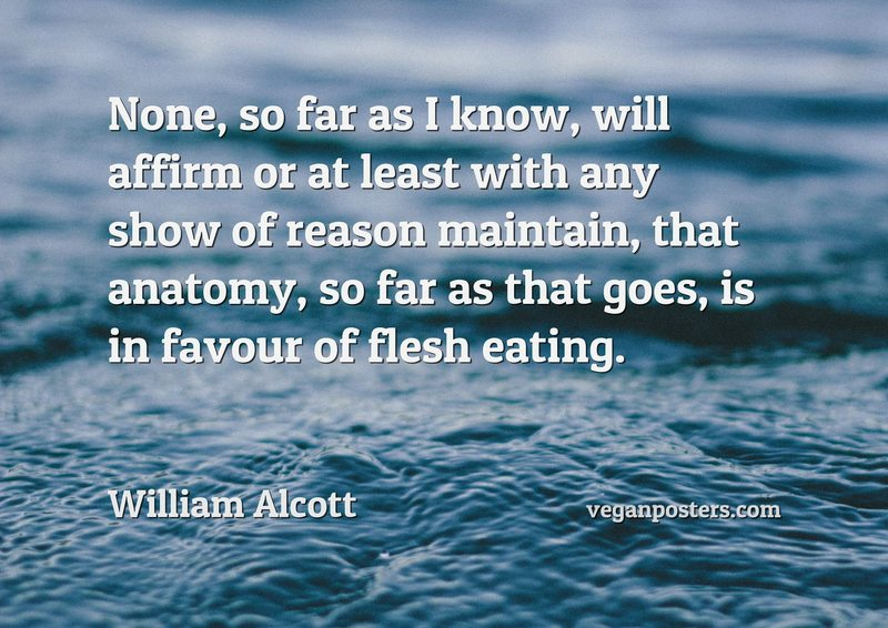 None, so far as I know, will affirm or at least with any show of reason maintain, that anatomy, so far as that goes, is in favour of flesh eating.