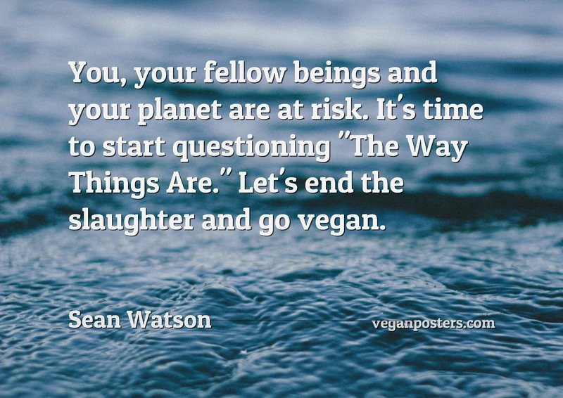 "You, your fellow beings and your planet are at risk. It's time to start questioning ""The Way Things Are."" Let's end the slaughter and go vegan."