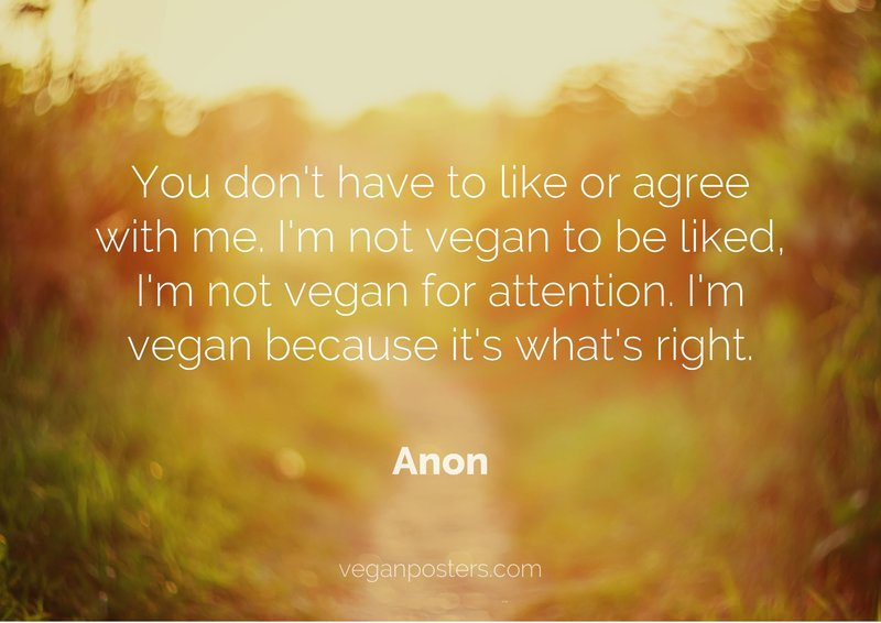 You don't have to like or agree with me. I'm not vegan to be liked, I'm not vegan for attention. I'm vegan because it's what's right.