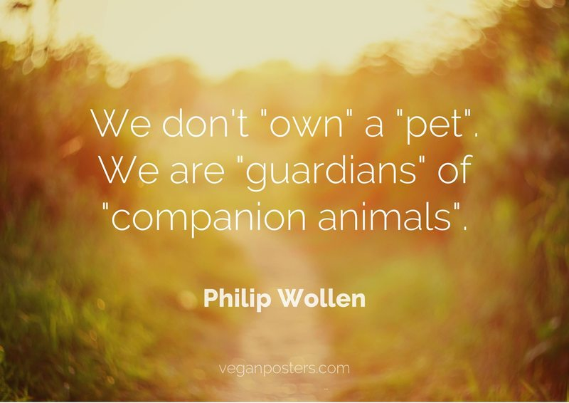 "We don't ""own"" a ""pet"". We are ""guardians"" of ""companion animals""."