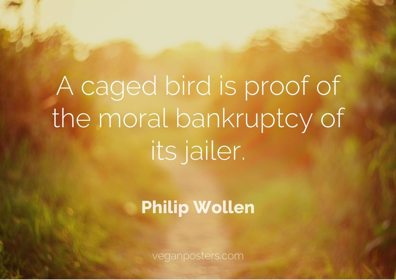 A caged bird is proof of the moral bankruptcy of its jailer.