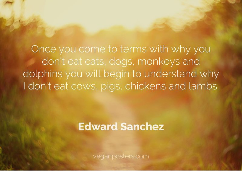 Once you come to terms with why you don't eat cats, dogs, monkeys and dolphins you will begin to understand why I don't eat cows, pigs, chickens and lambs.