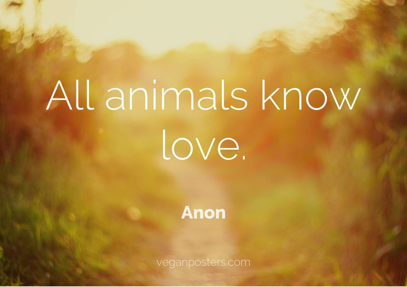All animals know love.