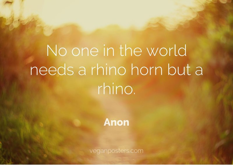 No one in the world needs a rhino horn but a rhino.