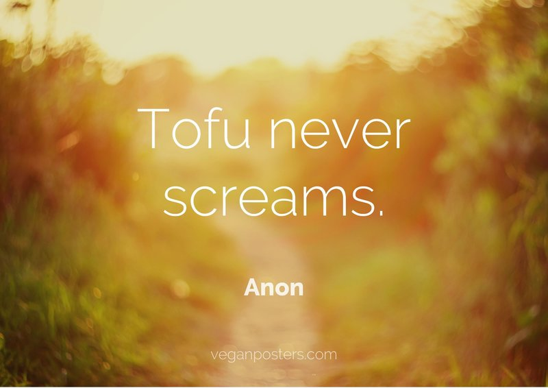 Tofu never screams.